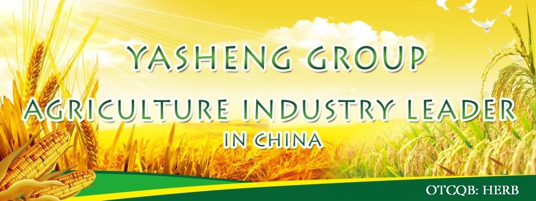 Yasheng Group